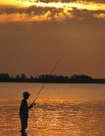 Alaskan Fishing Vacation Sets Fishing Theme